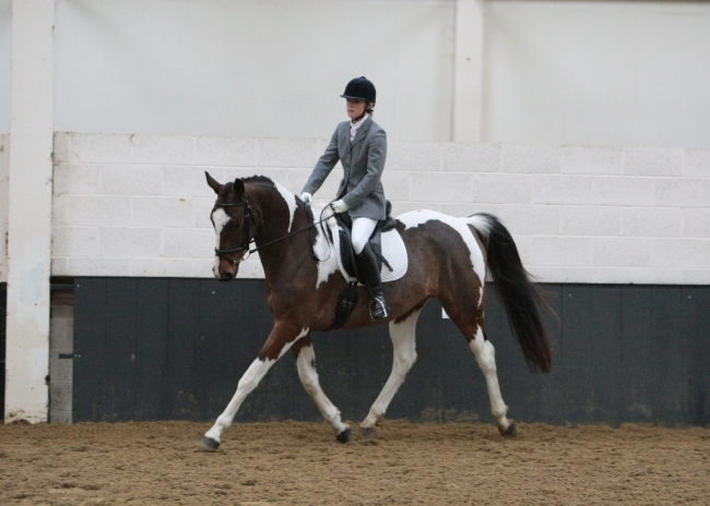 Beverley Brightman Dressage Training